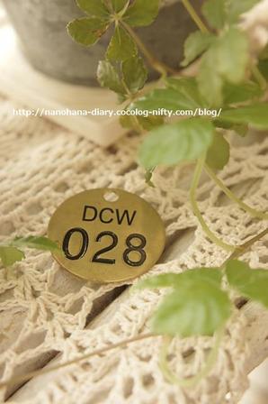 Dsc04132